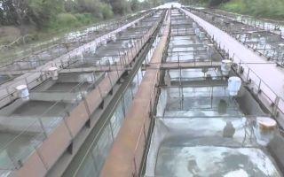 Должностная инструкция машиниста машин и механизмов внутренних водоемов 3-го разряда